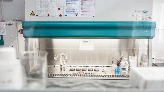 BIOLAB Umweltanalysen Braunschweig, Mikrobiologie